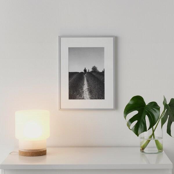 LOMVIKEN Cadre, aluminium, 30x40 cm