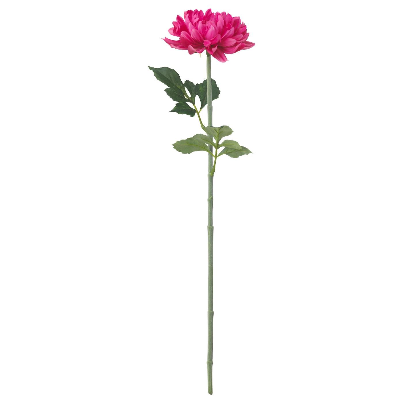 smycka fleur artificielle dahlia rose fonc 75 cm ikea. Black Bedroom Furniture Sets. Home Design Ideas