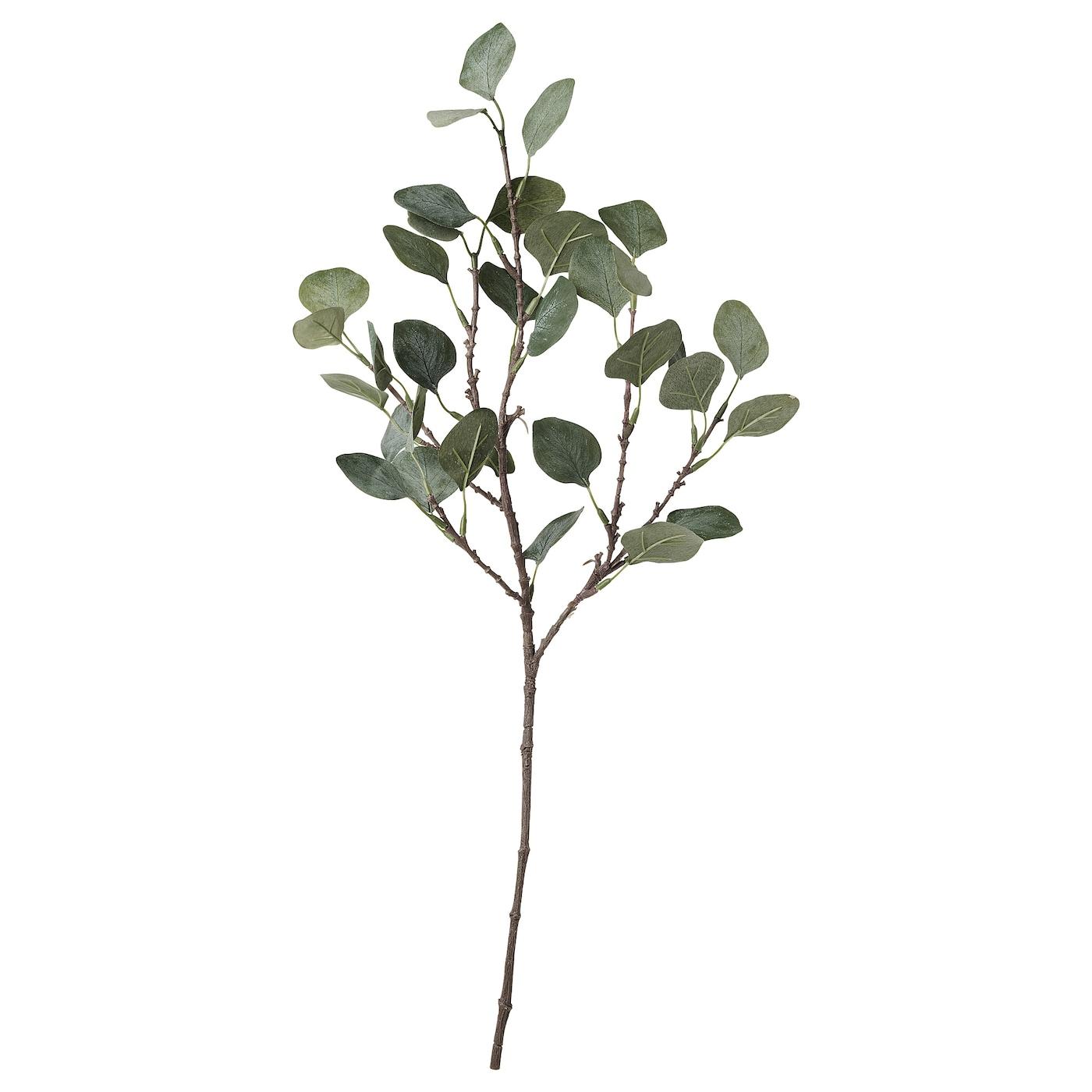 Smycka Fleur Artificielle Eucalyptus Vert 65 Cm Ikea