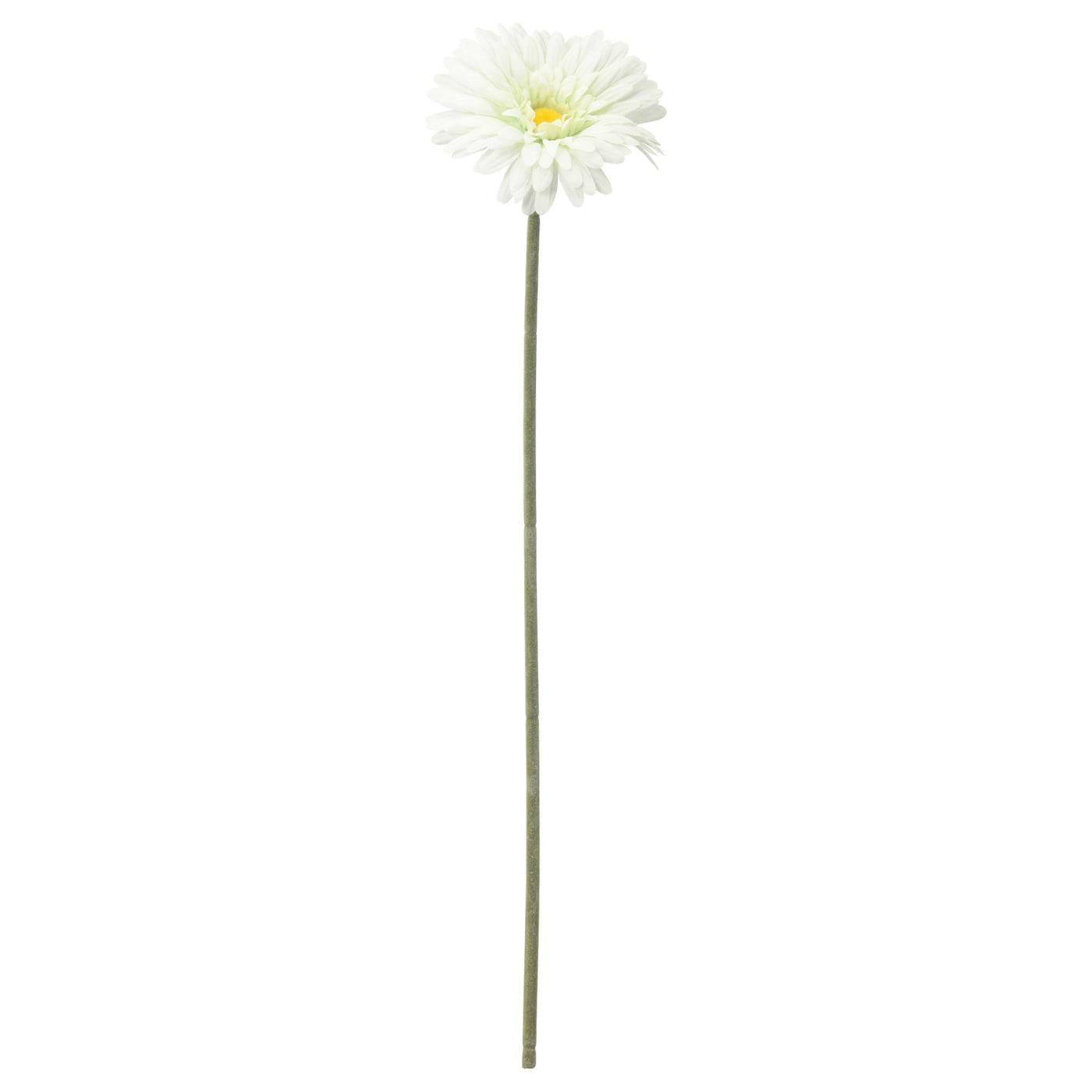 smycka fleur artificielle gerbera blanc 50 cm ikea. Black Bedroom Furniture Sets. Home Design Ideas