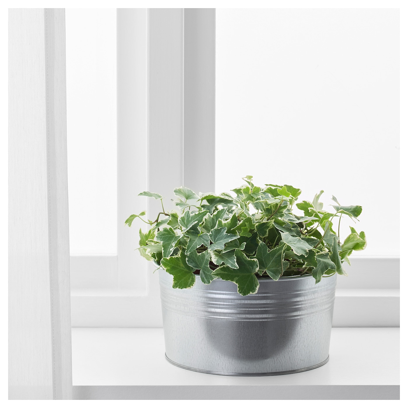 IKEA SOCKER cache-pot