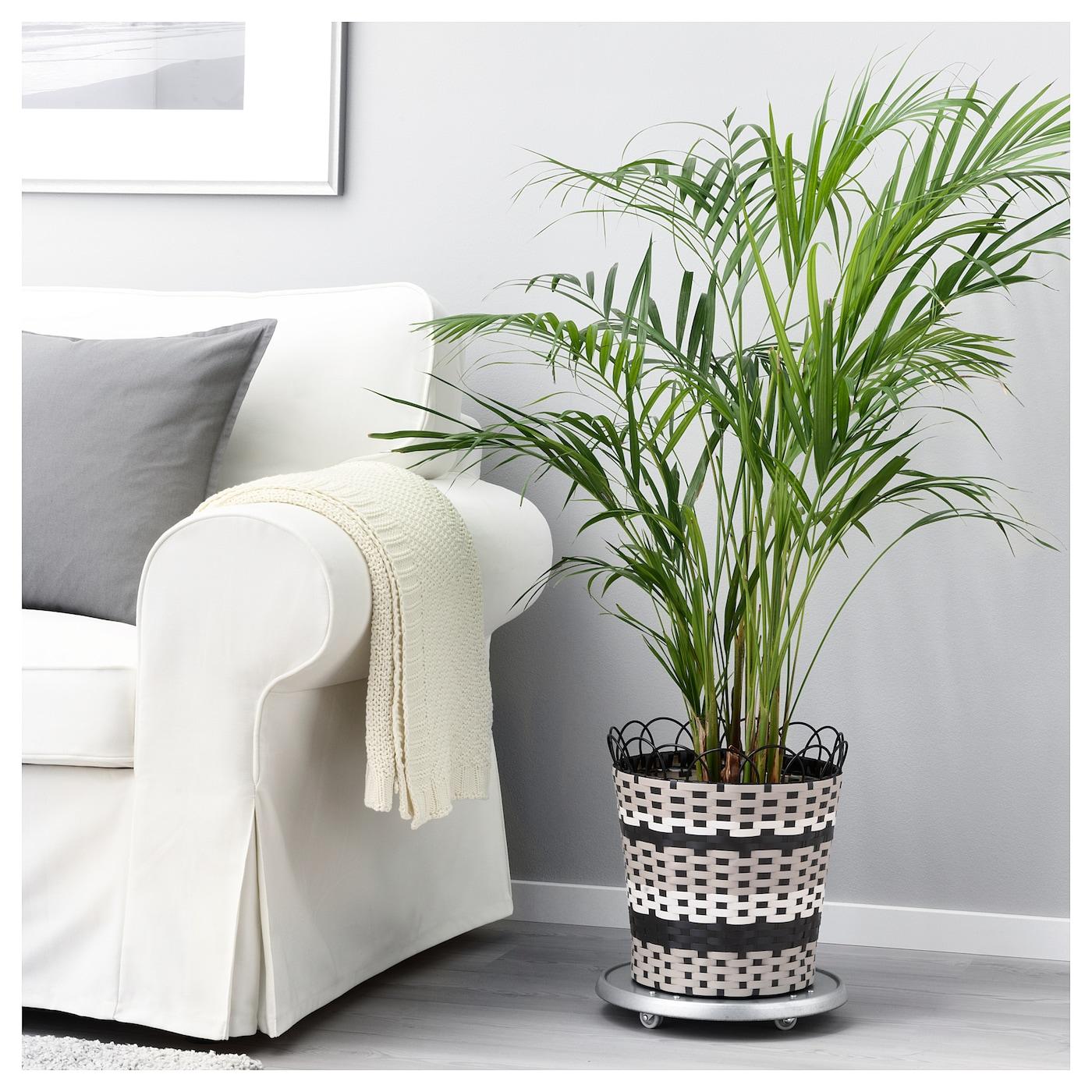 sommar 2018 cache pot int rieur ext rieur beige 24 cm ikea. Black Bedroom Furniture Sets. Home Design Ideas
