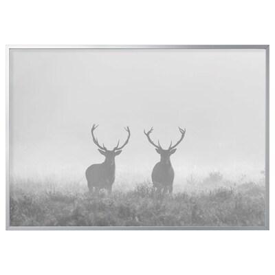 BJÖRKSTA Foto met lijst, Herten in mist/aluminiumkleur, 200x140 cm