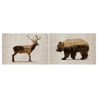 BJÖRNAMO Afbeelding zonder lijst, set van 2, Wilde dieren II, 30x20 cm