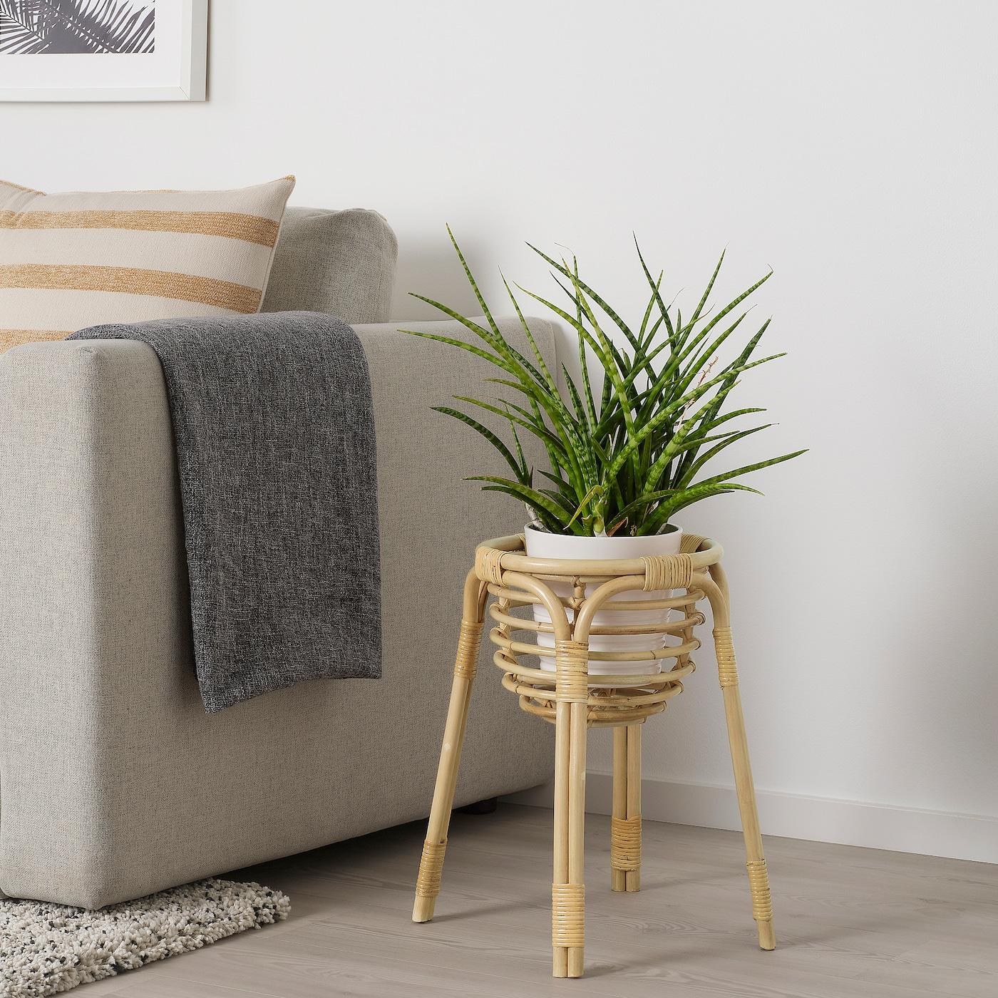 BUSKBO Plantenstandaard, rotan, 43 cm
