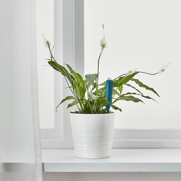 CHILIPULVER Vochtsensor voor planten, groen