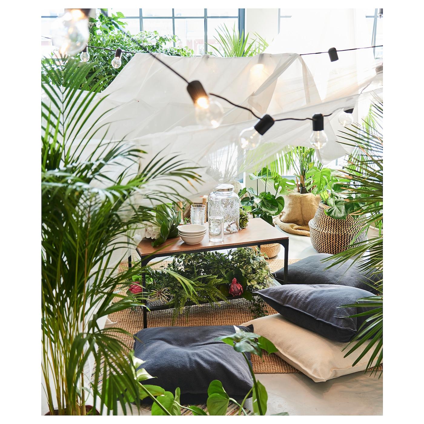 chrysalidocarpus lutescens potplant goudpalm 24 cm ikea. Black Bedroom Furniture Sets. Home Design Ideas