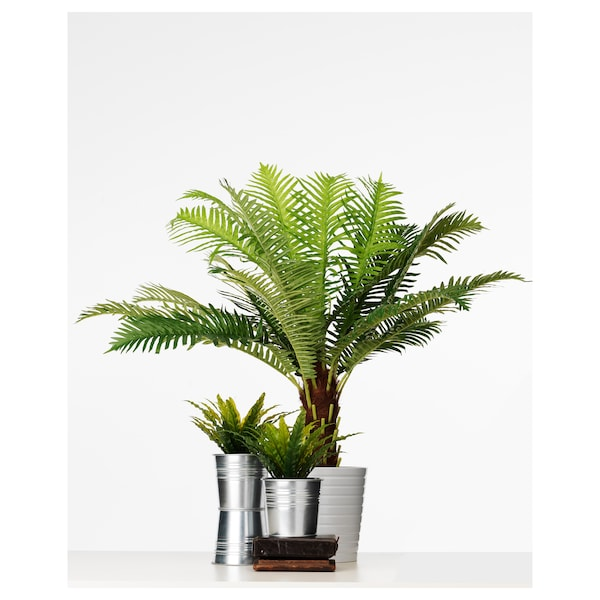 FEJKA Kunstplant, binnen/buiten Sagopalm, 17 cm