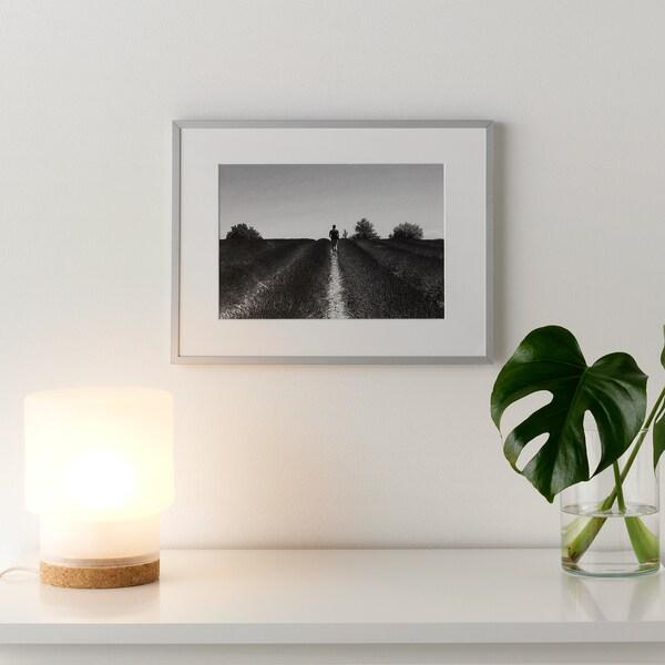 LOMVIKEN Fotolijst, aluminium, 30x40 cm