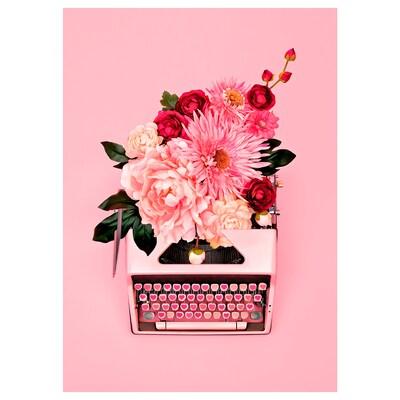PJÄTTERYD Afbeelding zonder lijst, Roze typemachine, 50x70 cm