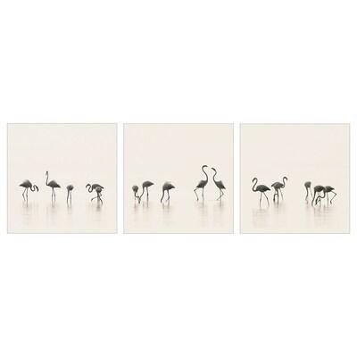 PJÄTTERYD afbeelding zonder lijst Flamingo 56 cm 56 cm 3 st.