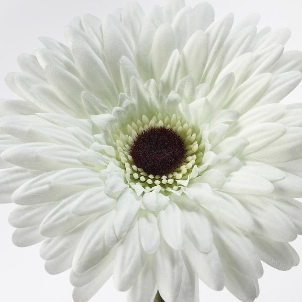 SMYCKA Kunstbloem, Gerbera/wit, 50 cm