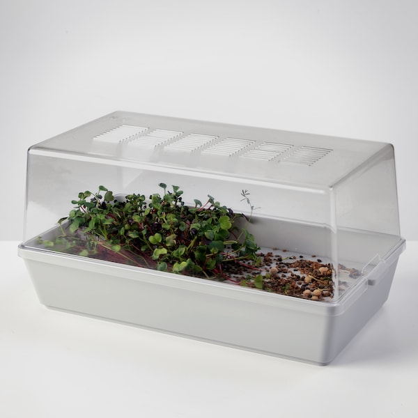 VÄXER plant- en kweekbak met deksel 42 cm 23 cm 20 cm