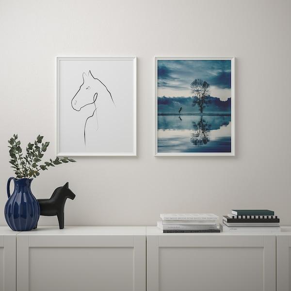 BILD صورة, رسم حصان, 40x50 سم
