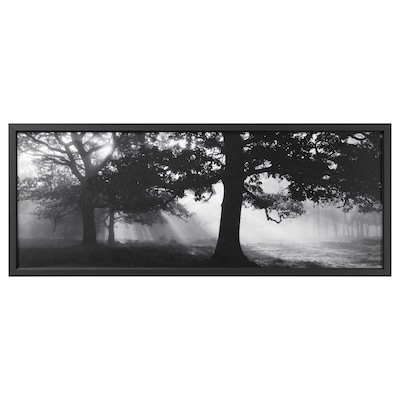 """BJÖRKSTA picture and frame Meadow Dream II/black 55 """" 22 """""""