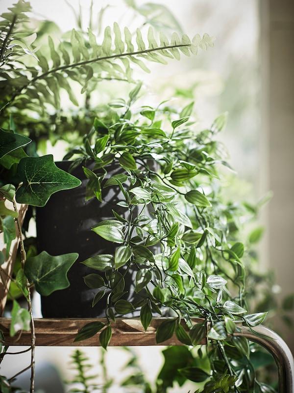"FEJKA Artificial potted plant, indoor/outdoor/hanging, 3 ½ """