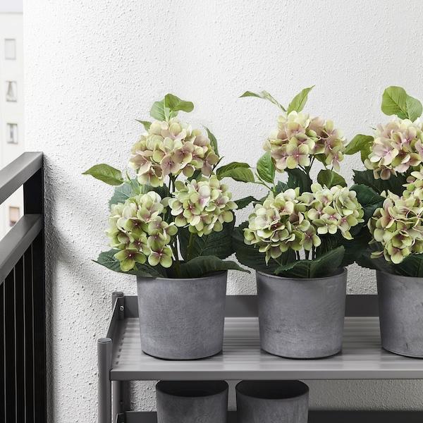 "FEJKA Artificial potted plant, indoor/outdoor/Hydrangea green, 4 ¾ """