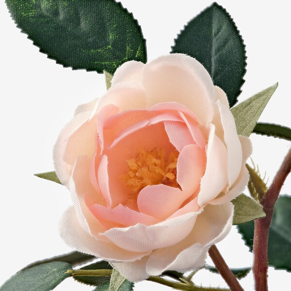 FEJKA Artificial potted plant, indoor/outdoor/Rose pink, 3 ½ ""