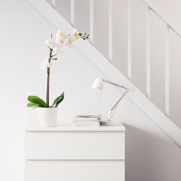 """FEJKA Artificial potted plant, Orchid white, 4 ¾ """""""