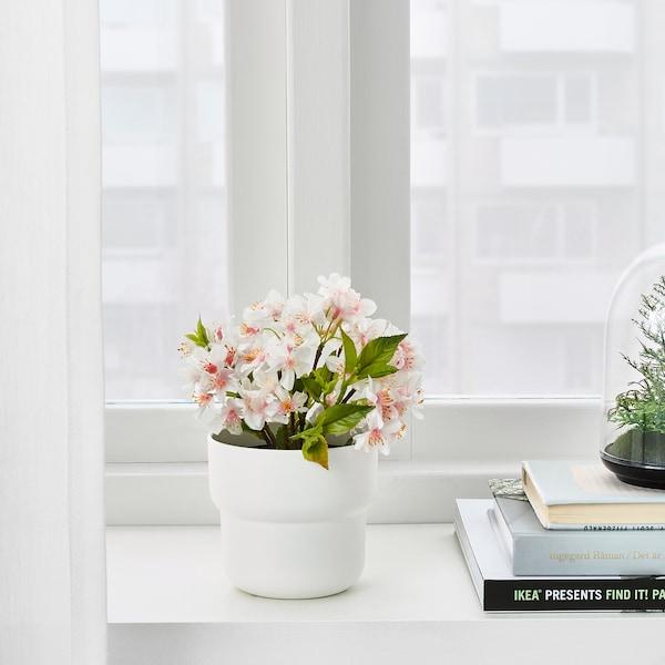 "FÖRENLIG Plant pot, indoor/outdoor white, 3 ½ """
