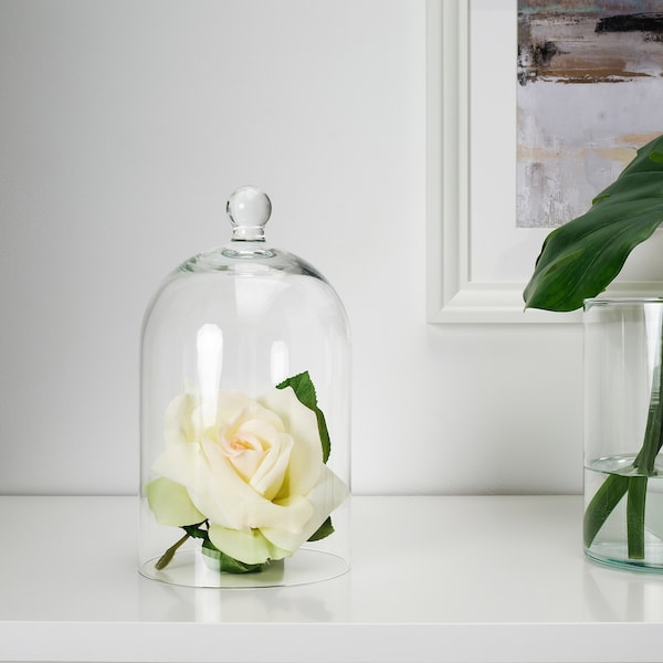 """MORGONTIDIG Glass dome, clear glass, 9 ¾ """""""