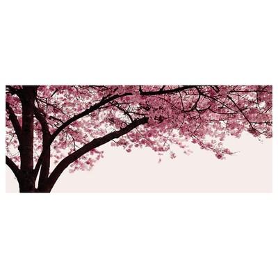 "PJÄTTERYD Picture, Cherry blossom tree, 55x22 """