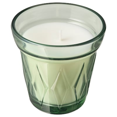 VÄLDOFT Scented candle in glass, Morning dew/light green, 3 ¼ ""
