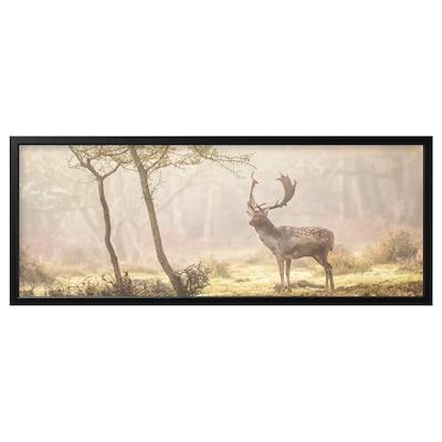 BJÖRKSTA Gerahmtes Bild, Rotwild auf der Lichtung/schwarz, 140x56 cm