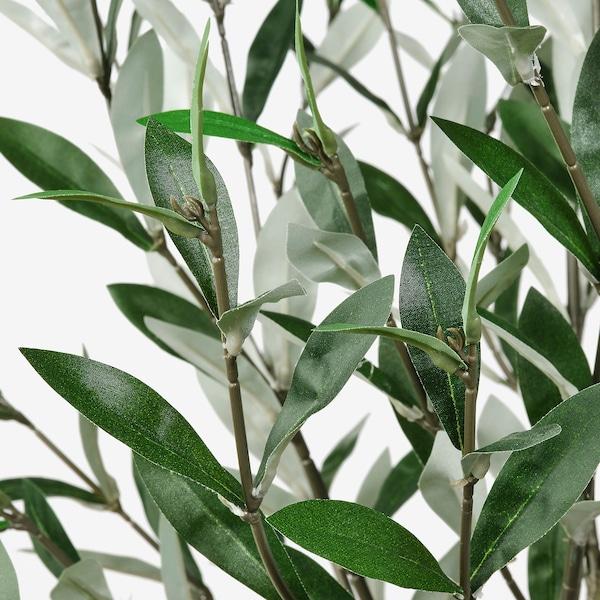 FEJKA Topfpflanze, künstlich drinnen/draußen Olivenbaum 19 cm 150 cm