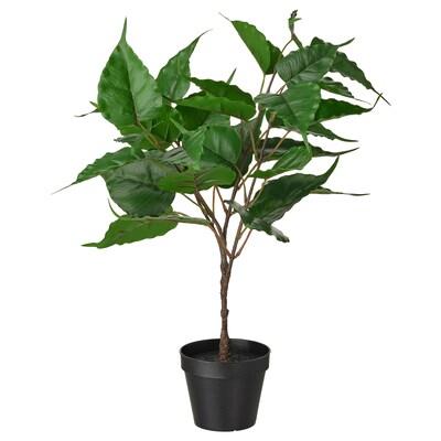 FEJKA Topfpflanze, künstlich, drinnen/draußen Feige, 12 cm