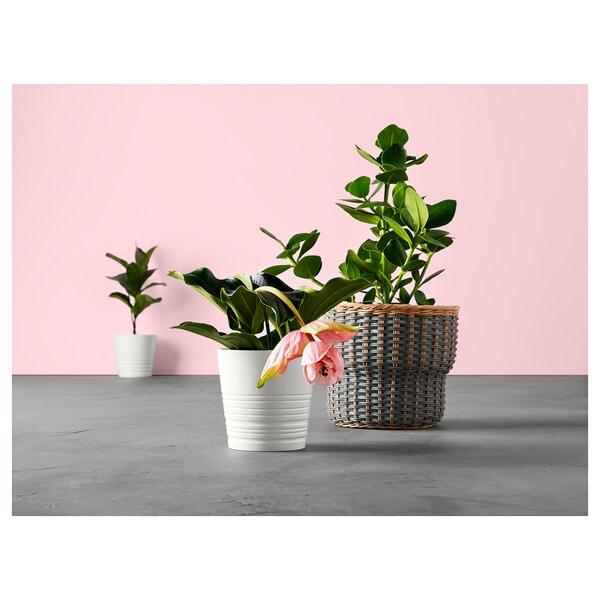 MUSKOT Plant pot, white, 15 cm
