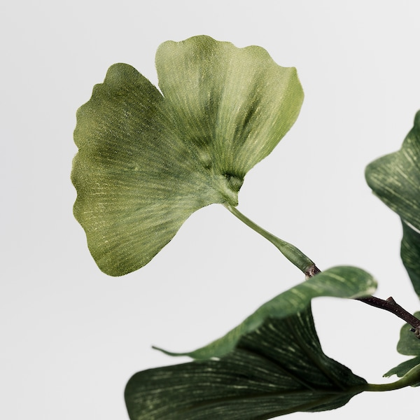 SMYCKA Artificial flower, Ginkgo/green, 125 cm