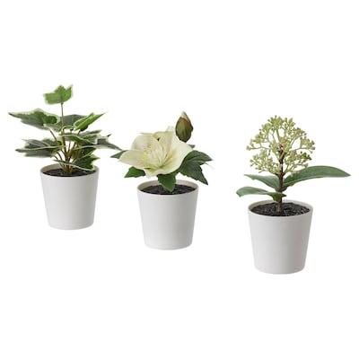 FEJKA Plante artifici av pot, lot de 3, intérieur/extérieur/vert/blanc, 6 cm