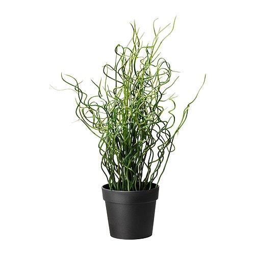 Plantes artificielles exterieur suisse - Plantes fleuries artificielles pour exterieur ...