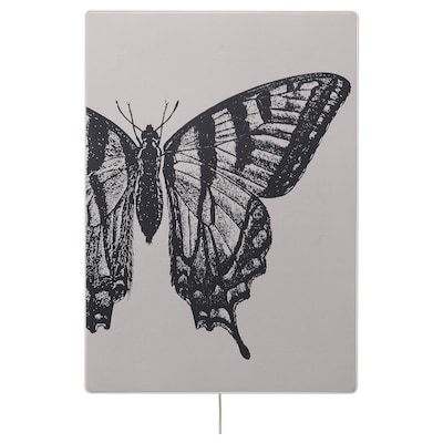 SYMFONISK Photo pour cadre enceinte, bois - papillon