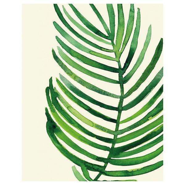 BILD Poster, Foglia di palma tropicale IV, 40x50 cm