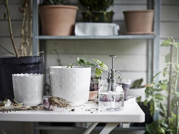 SESAMFRÖN Nebulizzatore per piante, vetro trasparente, 25 cl