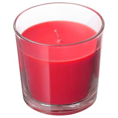 SINNLIG Candela profumata con vetro, Bacche rosse/rosso, 9 cm
