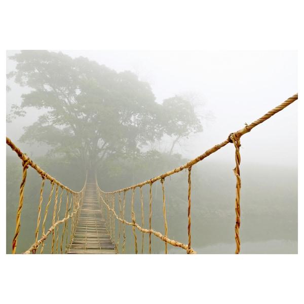 BJÖRKSTA Obraz, cesta džunglí, 140x100 cm