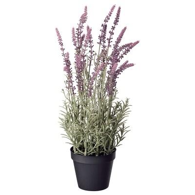 FEJKA umělá květina v květ. levandule fialová 12 cm 48 cm