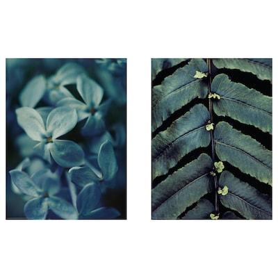 BILD Bild, Kultivieren, 30x40 cm