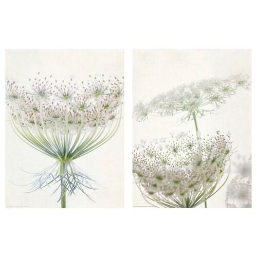 BILD Bild Blumenspitze 30 cm 40 cm 2 Stück
