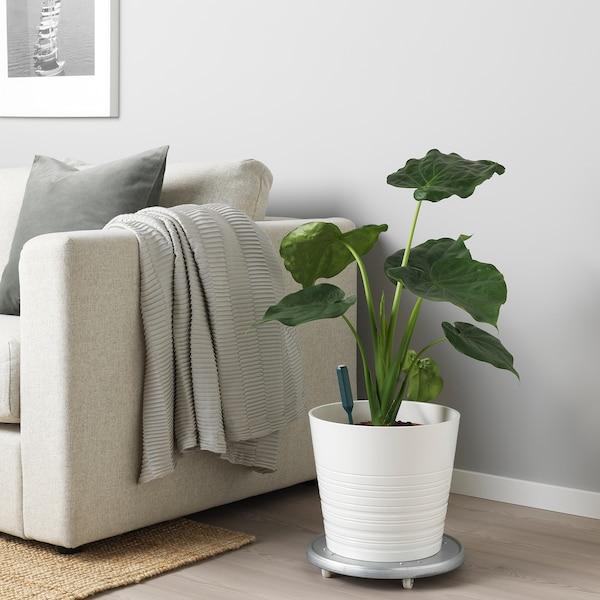 IKEA CHILIPULVER Feuchtigkeitssensor für pflanzen