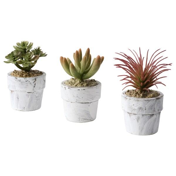 FEJKA Topfpflanze, künstlich/mit Topf drinnen/draußen Sukkulente 8 cm 4 cm 3 Stück