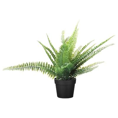 FEJKA Topfpflanze, künstlich, drinnen/draußen Farn, 9 cm
