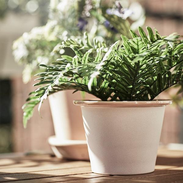 FEJKA Topfpflanze, künstlich, drinnen/draußen Tüpfelfarn, 9 cm