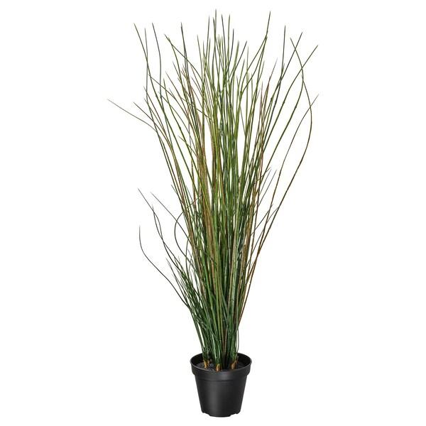 FEJKA Topfpflanze, künstlich, Gras, 17 cm