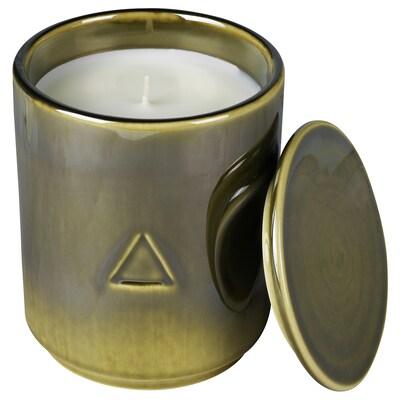 OSYNLIG Duftkerze im Behälter mit Deckel, Kaminholz und Gewürze/dunkelgrün, 10 cm
