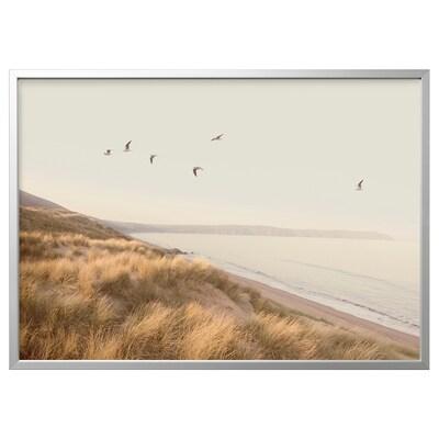 BJÖRKSTA Billede med ramme, fugle ved stranden/aluminiumsfarvet, 140x100 cm