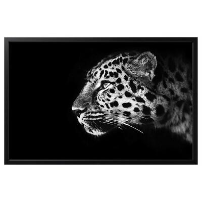 BJÖRKSTA Billede med ramme, gepard/sort, 118x78 cm